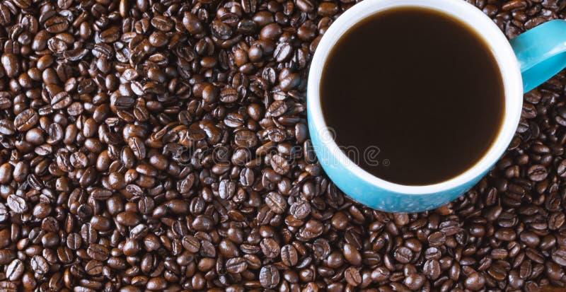 O fundo inteiro dos feijões de café com azul encheu o copo de café foto de stock royalty free