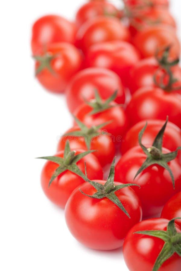 O fundo maduro dos tomates isolou-se foto de stock royalty free