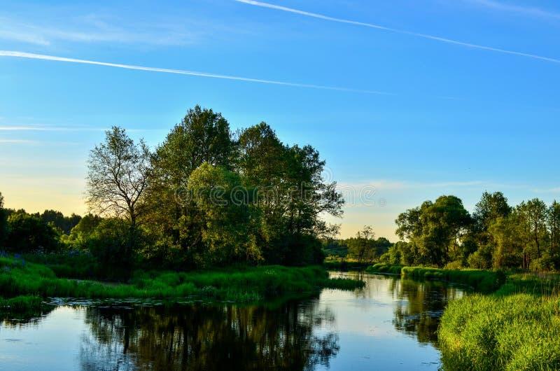 O fundo panorâmico da paisagem natural do sol da manhã representa um sistema ecológico bonito fotos de stock royalty free