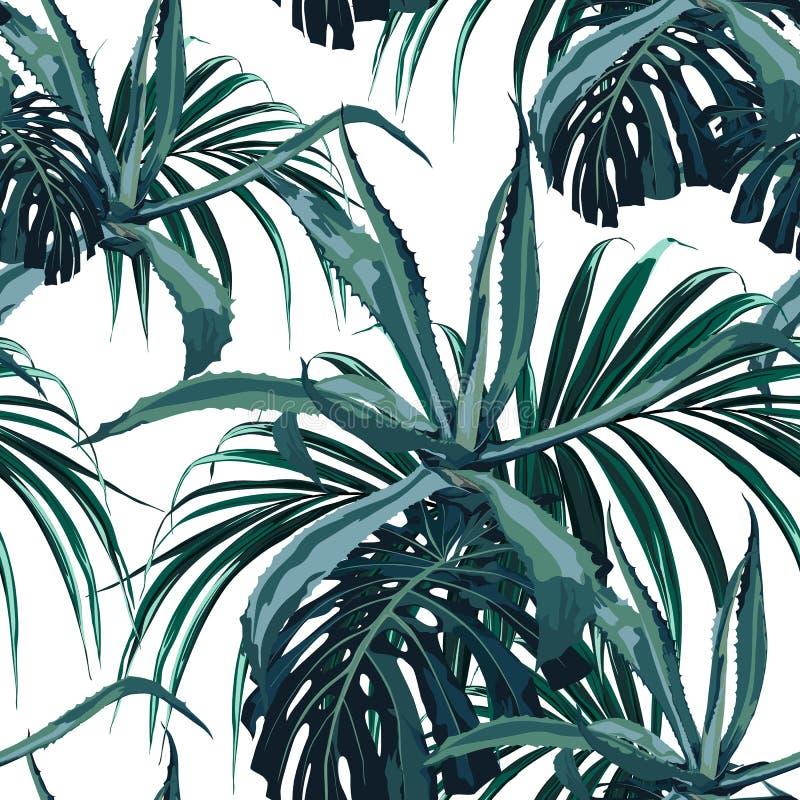 O fundo sem emenda floral do teste padrão do vetor bonito com agave e o monstera tropical da palma sae ilustração royalty free