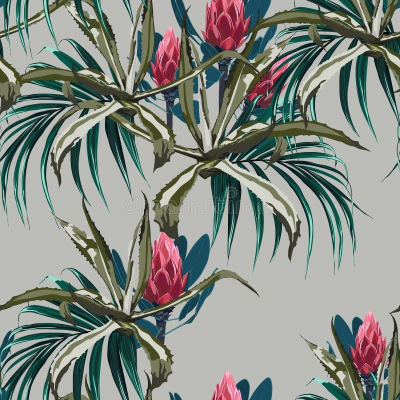 O fundo sem emenda floral do teste padrão do vetor bonito com agave e protea floresce ilustração stock