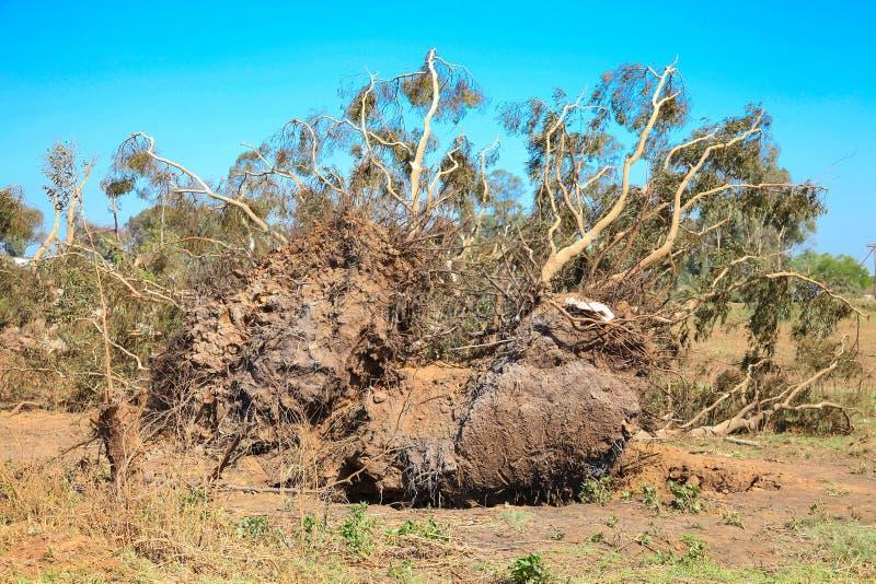 O furacão danificou casas em um distrito pequeno imagens de stock royalty free