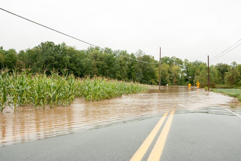 O furacão molha a inundação da terra foto de stock