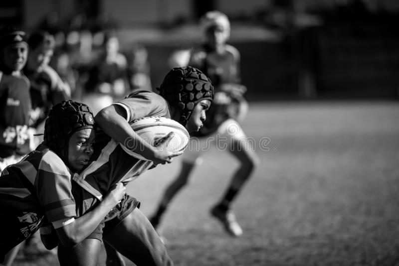 O futuro do rugby fotos de stock