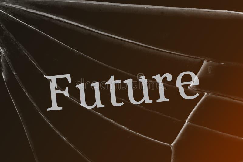 O futuro do texto no vidro quebrado Conceito de perder o futuro imagem de stock royalty free