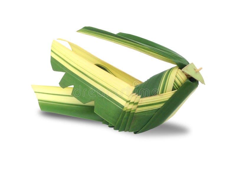 O gafanhoto tece feito das folhas do coco isoladas no fundo branco imagens de stock