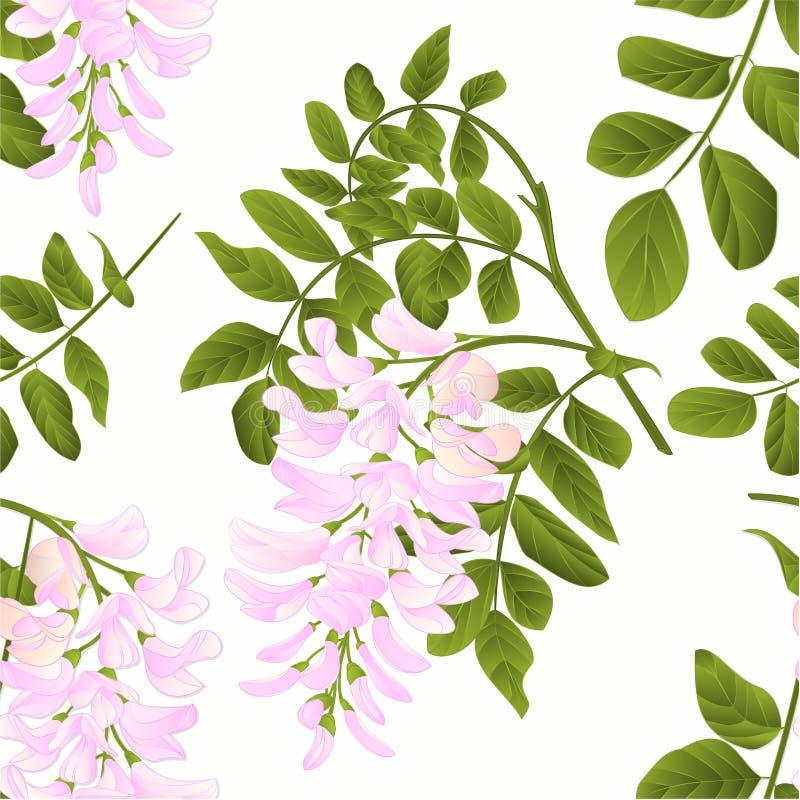 O galho sem emenda da árvore de locustídeo da textura com vintage das folhas e das flores vector o editabe da ilustração ilustração royalty free