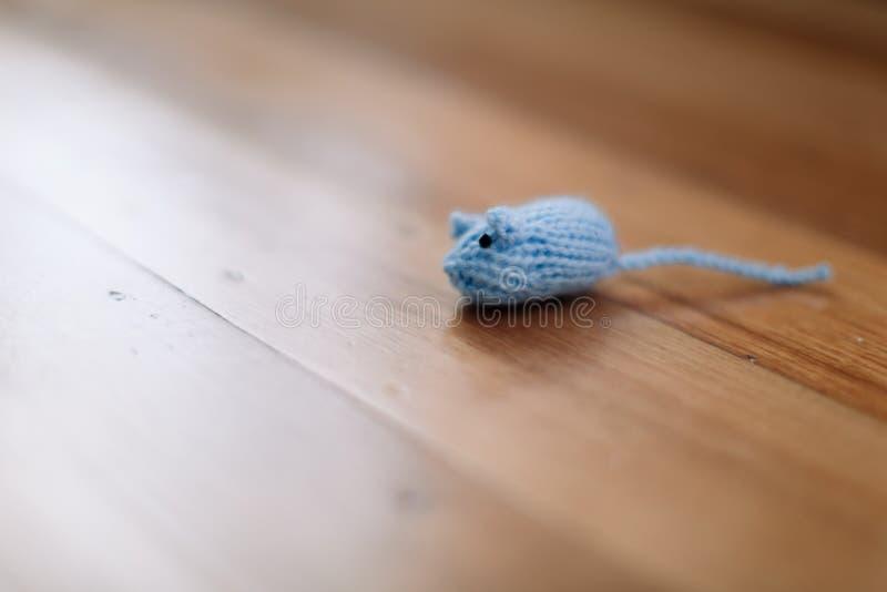 O gato de Ragdoll que joga com um azul fez malha o brinquedo do rato fotos de stock royalty free
