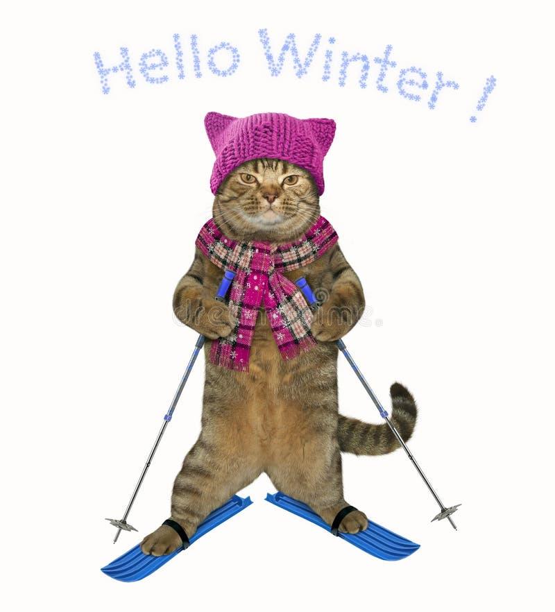 O gato em um chapéu é 2 de esqui ilustração royalty free
