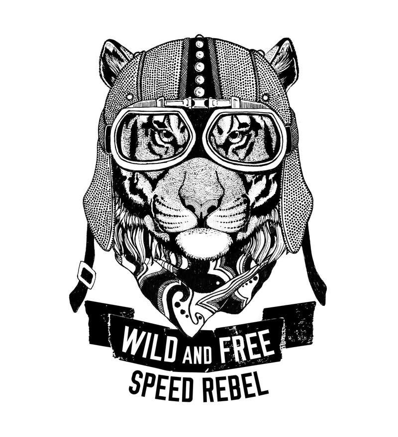 O gato selvagem do tigre selvagem seja emblema selvagem e livre do t-shirt, motociclista do molde, ilustração tirada mão do proje ilustração stock