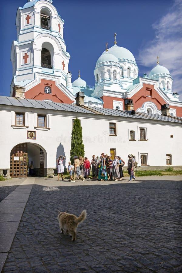 O gato vermelho vai encontrar um grupo de turistas que querem obter ao monastério de Valaam da transfiguração imagens de stock