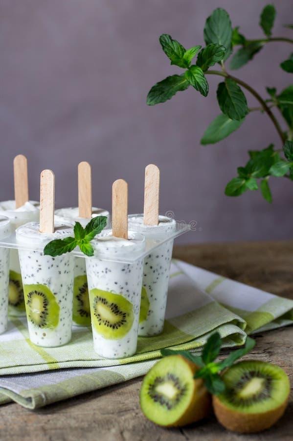 O gelado estala com quivi, sementes do chia e iogurte Rafrescamento do verão Sobremesa saudável caseiro foto de stock royalty free