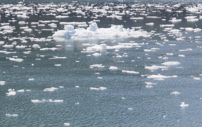 O gelo flui em Alaska fotos de stock