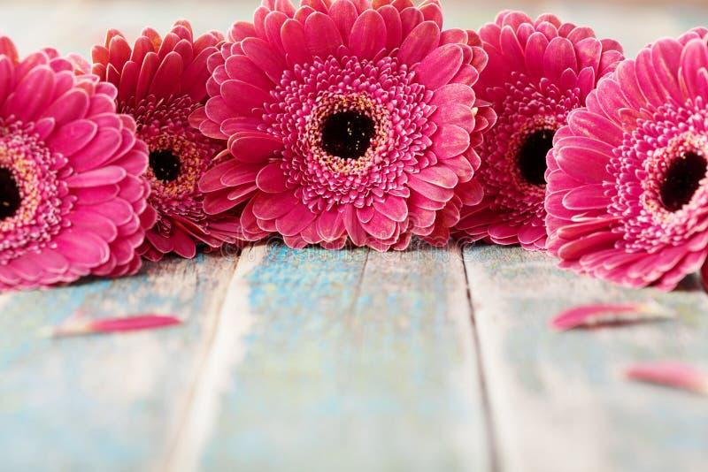 O gerbera da mola floresce o ramalhete no fundo de madeira rústico Cartão do dia do aniversário, do feriado, da mãe ou da mulher imagem de stock