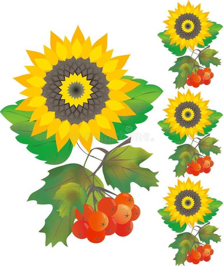 O girassol com florim levantou-se ilustração stock