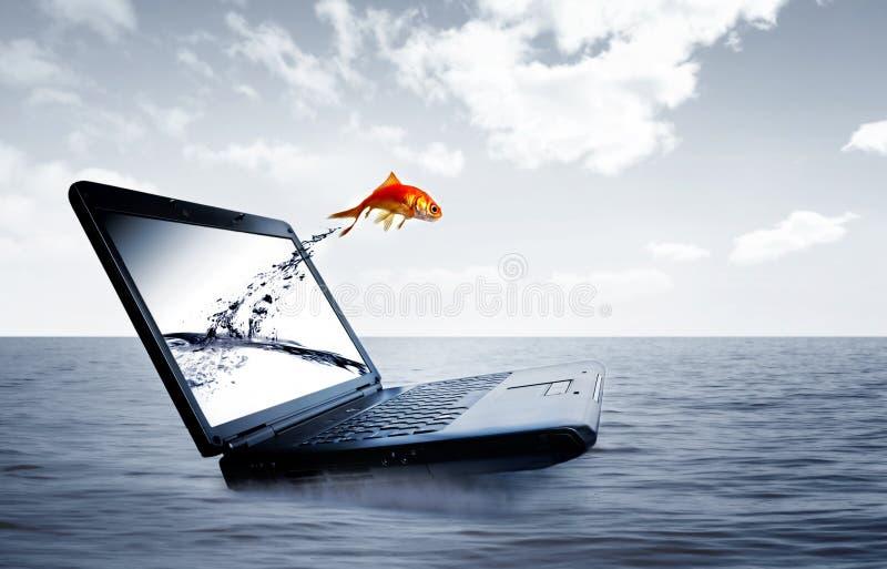 O Goldfish salta do monitor fotos de stock royalty free