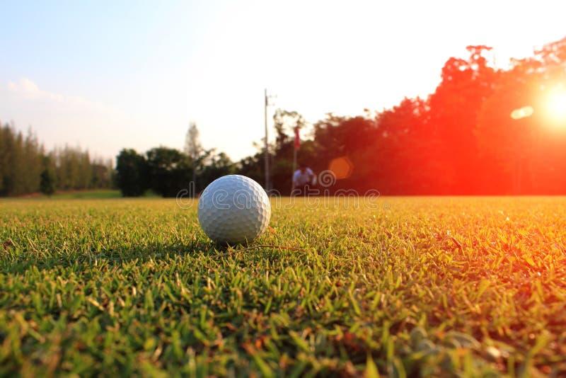 O golfe no gramado verde borra o jogador de golfe que olha a maneira que a bola de golfe será picado fotografia de stock royalty free
