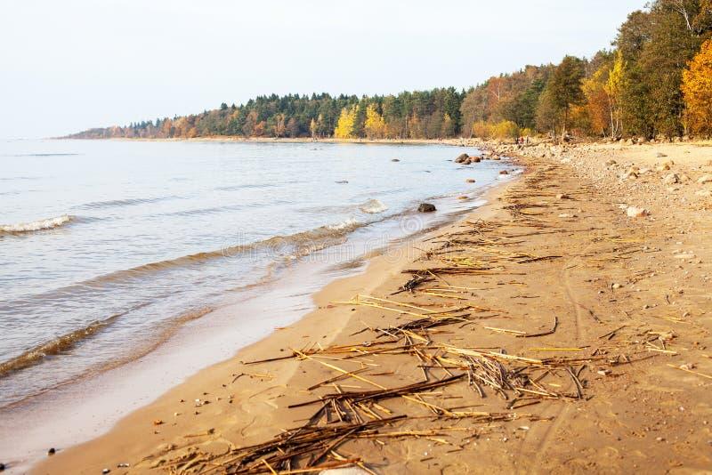 O Golfo da Finlândia no outono foto de stock