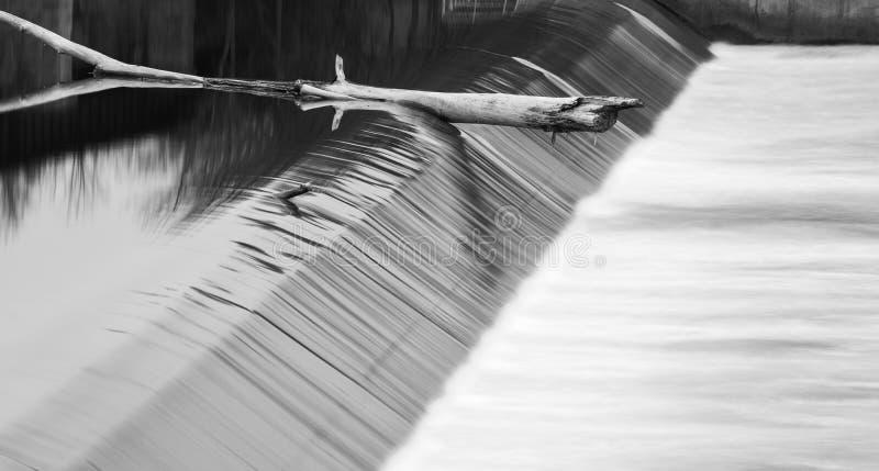 O grande ramo de árvore travou na borda de uma represa da água, relfections foto de stock