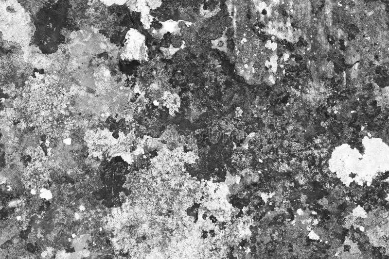O Grunge riscou a textura musgoso da parede - fundo consideravelmente abstrato da foto fotografia de stock royalty free