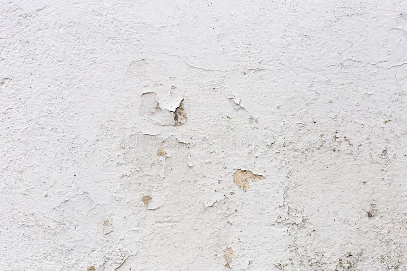 O grunge velho textures fundos Fundo perfeito com espaço fotos de stock royalty free