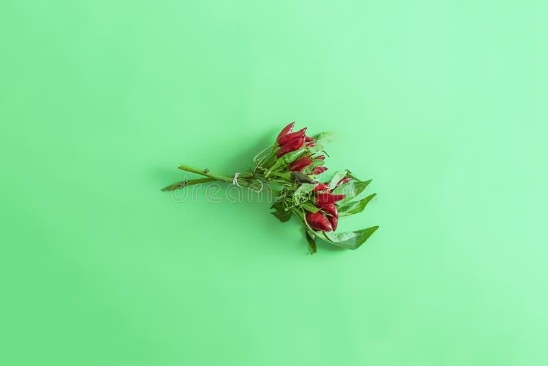 O grupo da pimenta de pimentão encarnado no plano cru minimalistic do conceito do alimento do fundo verde coloca d imagens de stock