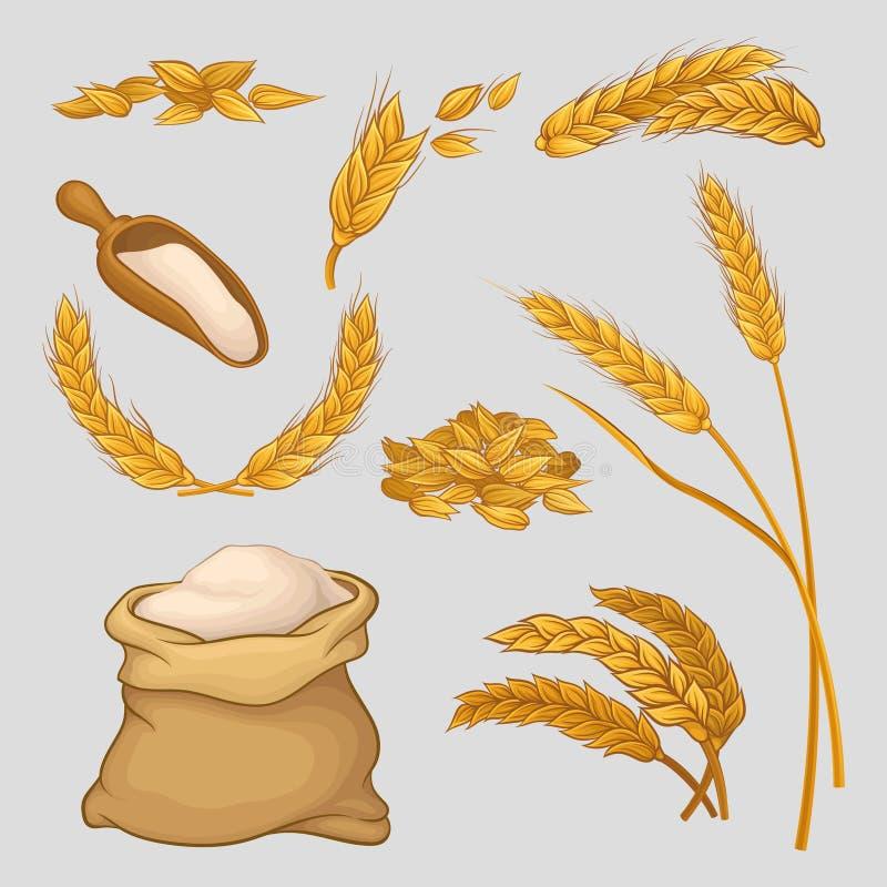 O grupo de ícones com as orelhas douradas do trigo, grões secadas, flour no saco de linho e na colher de madeira Colheita agrícol ilustração stock