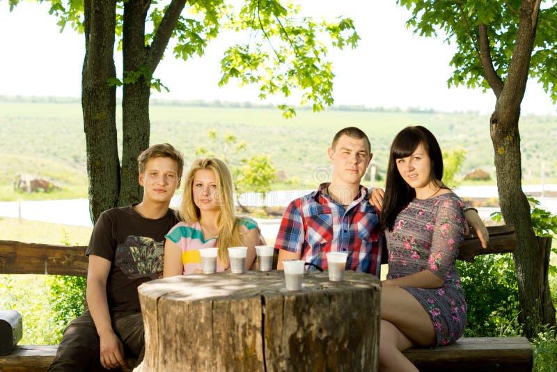 O grupo de amigos novos aprecia uma bebida imagens de stock royalty free