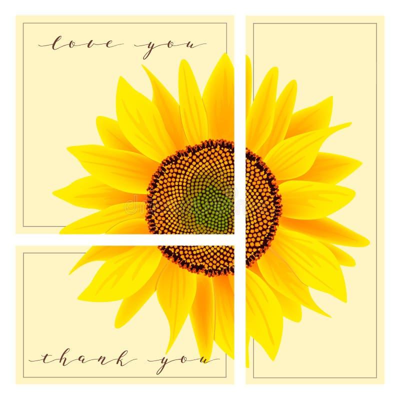 O grupo de cartões com palavras ama-o e agradece-lhe, girassol no fundo ilustração stock