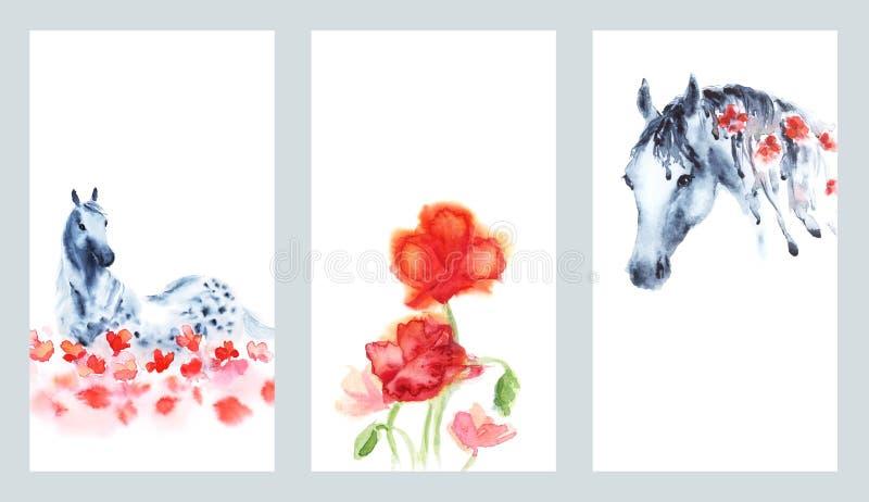 O grupo de cartões da pintura da mão da aquarela com mão dapple o cavalo cinzento e flores vermelhas das papoilas no branco ilustração royalty free