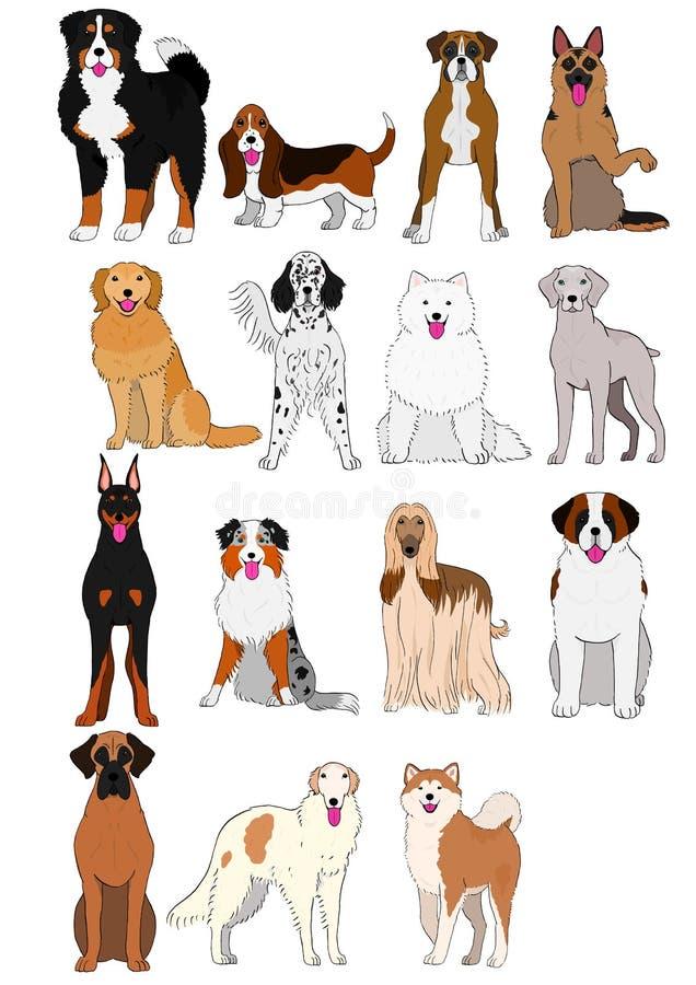 O grupo de grandes e cães médios produz a carta tirada mão ilustração do vetor
