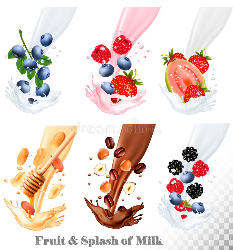 O grupo de leite diferente espirra com o fruto, as porcas e as bagas ilustração do vetor