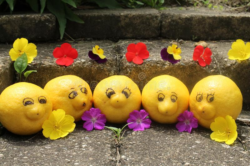 O grupo de limões felizes, sorrindo remover o tempo quando em férias levantar para a câmera imagem de stock