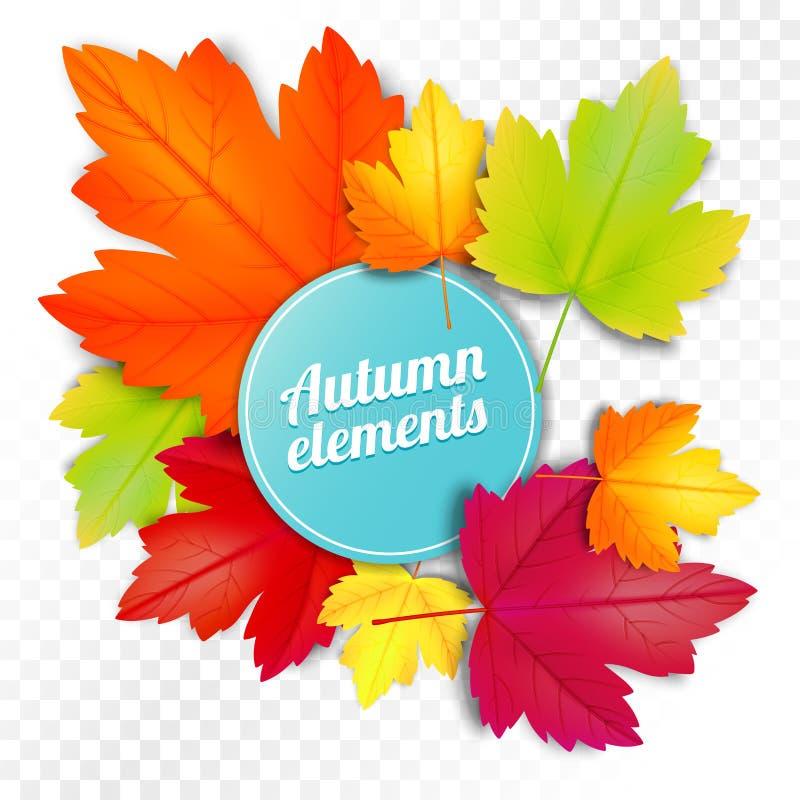 O grupo de outono coloriu as folhas no fundo branco e transparente ilustração stock