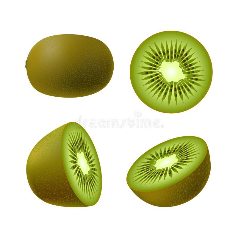 O grupo de quivi suculento inteiro colorido realístico isolado, o quivi parcialmente verde e o quivi circundam no fundo branco Co ilustração stock