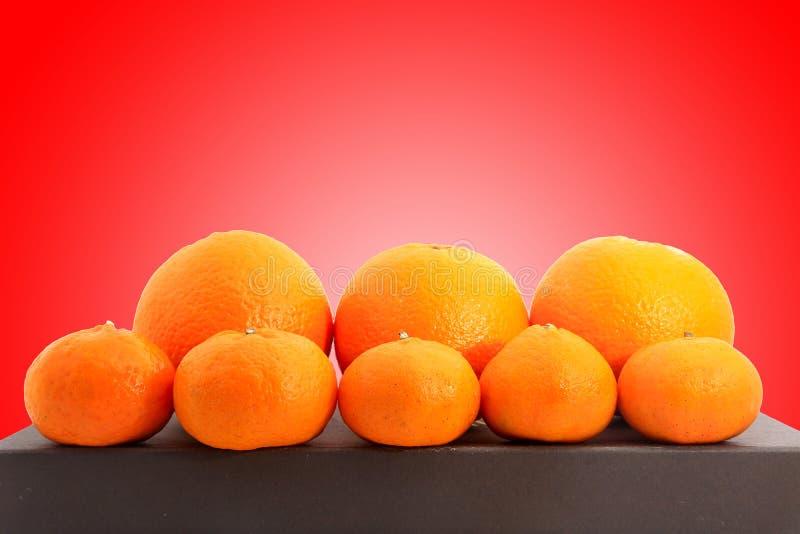 O grupo de tangerinas ou de tanjerinas pequenas e grandes disparou sobre o fundo vermelho imagem de stock royalty free