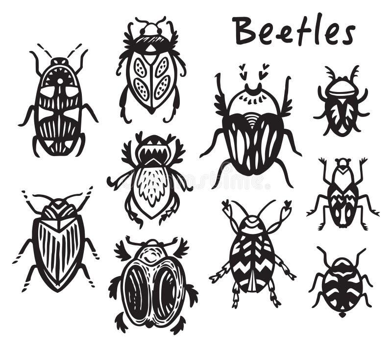 O grupo de tinta tirada mão desinseta, besouros ilustração do vetor