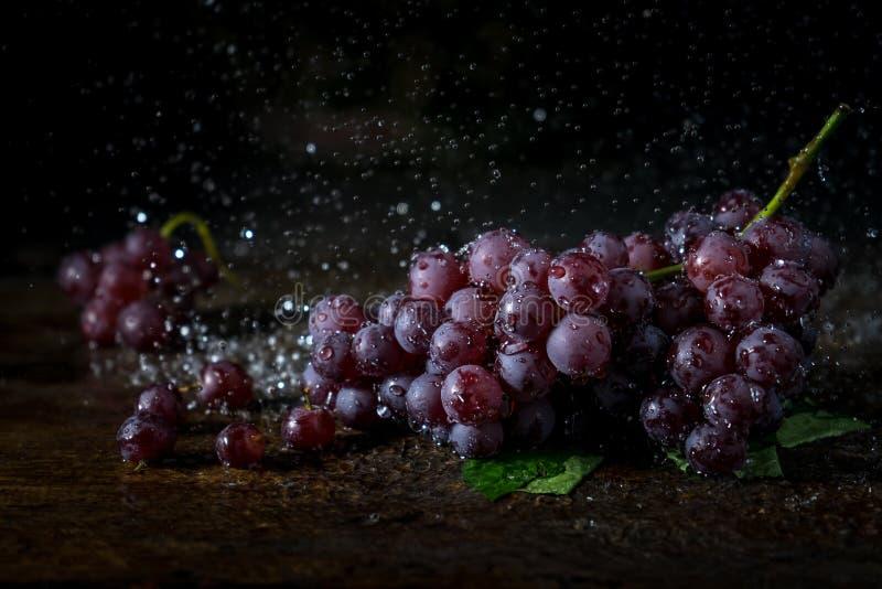 O grupo de uva tem o respingo da água com fundo escuro imagem de stock royalty free