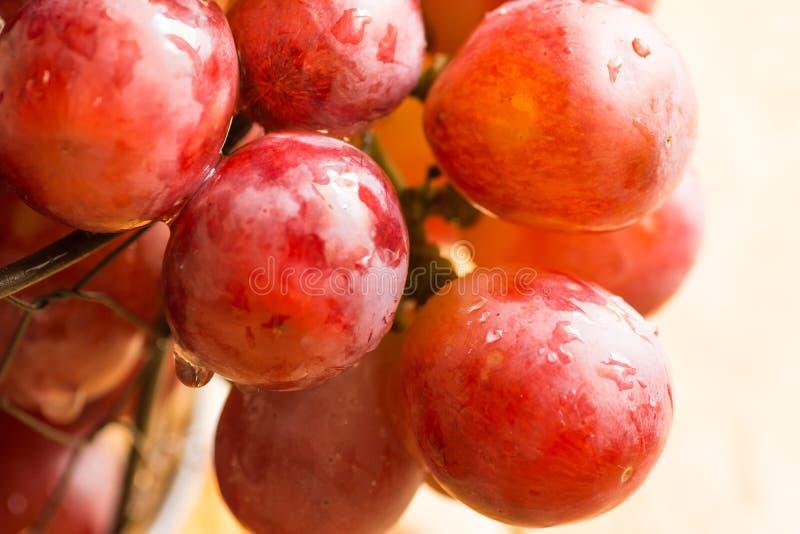 O grupo de uvas suculentas vermelhas ou cor-de-rosa frescas maduras com água deixa cair na cesta de fio, pendurando sobre a borda imagem de stock royalty free
