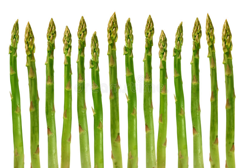Vegetal do aspargo fotos de stock royalty free