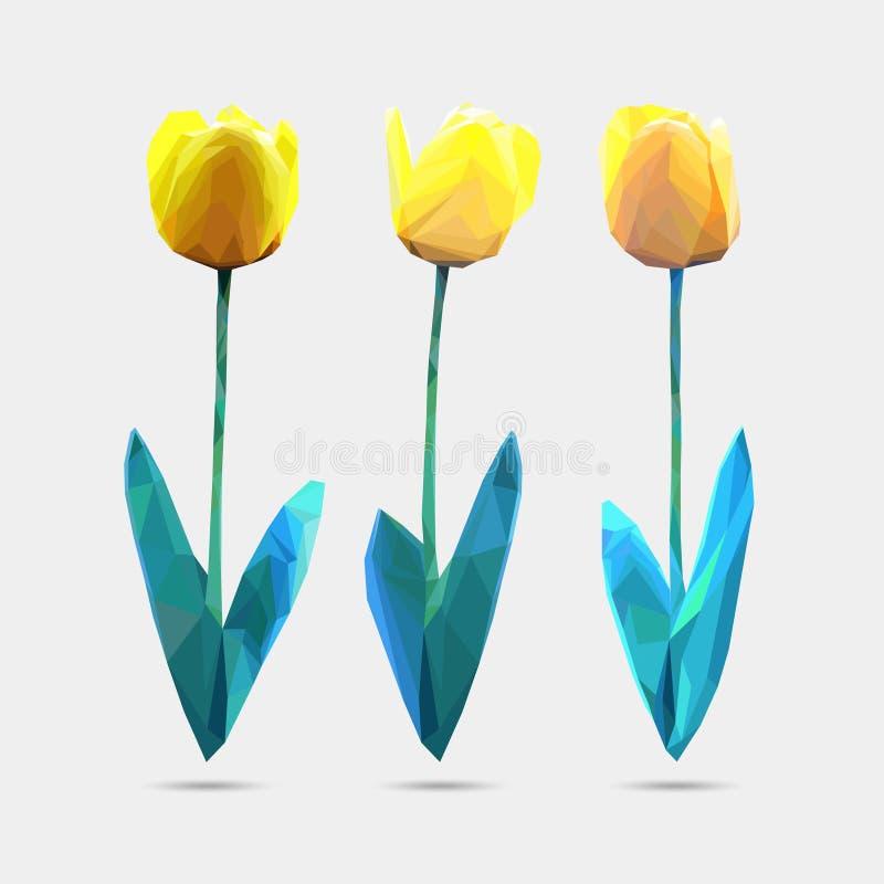 O grupo do vetor de baixo estilo poli floresce a tulipa Ilustração do vetor da flor do polígono Painel solar e sinal para a energ ilustração do vetor