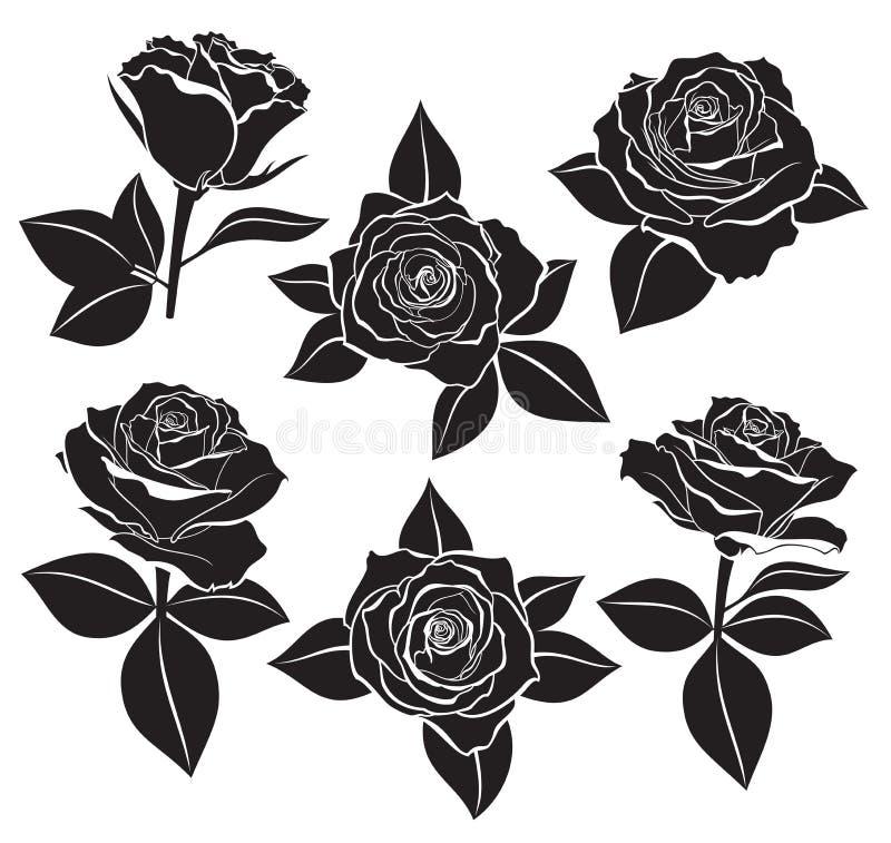 O grupo do vetor de Rosa brota, provem e sae com a linha de contorno e as silhuetas brancas na cor preta Ilustração do vetor para ilustração stock