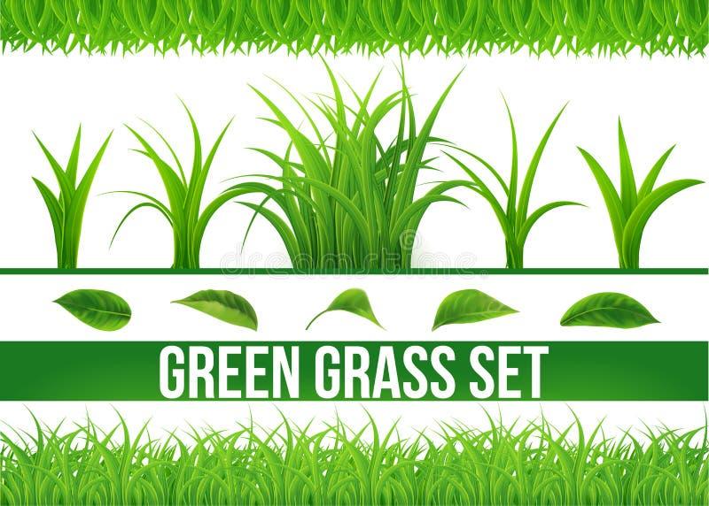 O grupo grande da grama verde isolou o fundo branco, grama fresca da mola, beira, folha, vista panorâmica, 3d ilustração do vetor