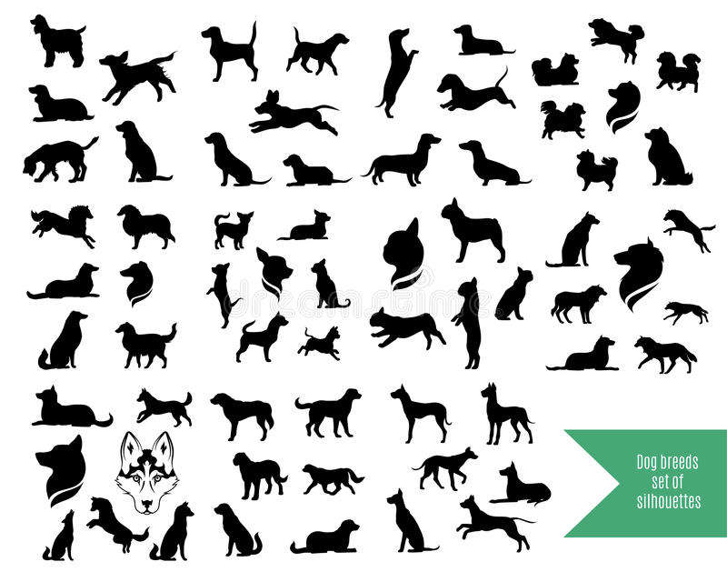 O grupo grande de cão produz silhuetas ilustração royalty free