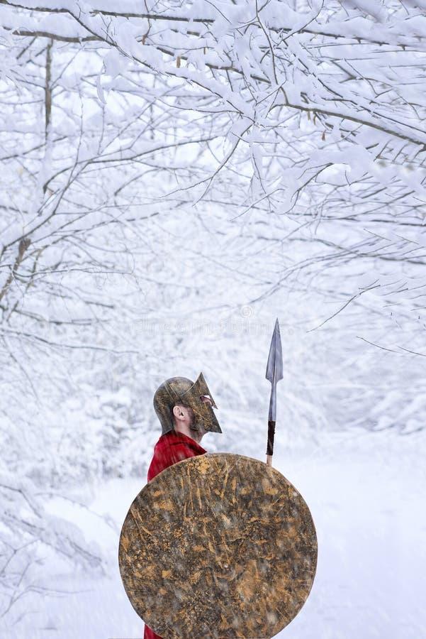 O guerreiro espartano está na floresta nevado imagem de stock royalty free