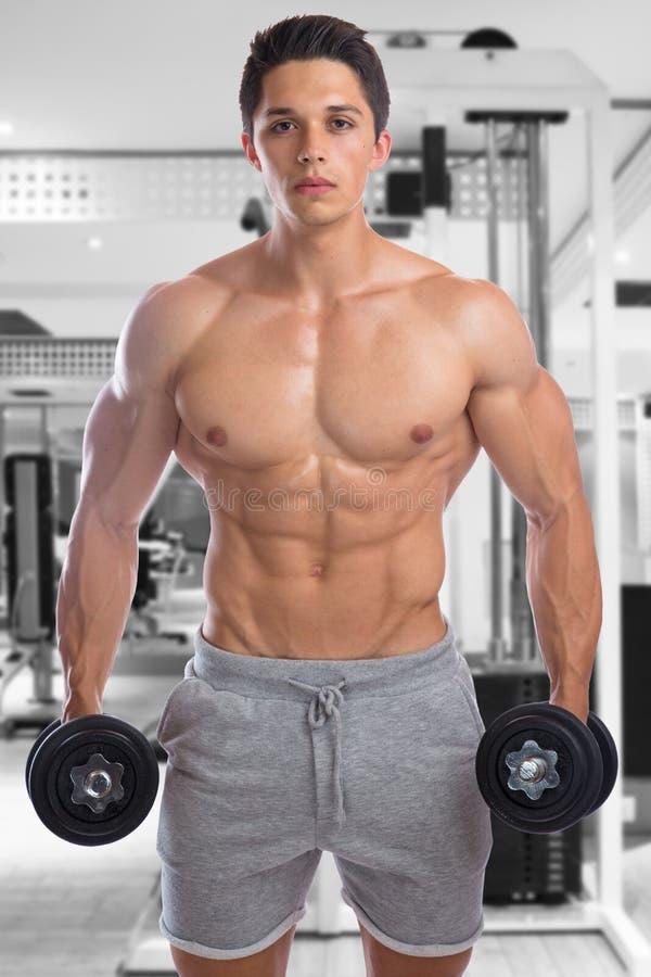 O halterofilismo do halterofilista muscles o homem novo muscular forte d do gym fotografia de stock royalty free