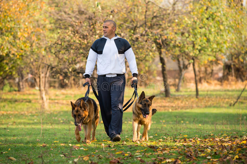 O homem adulto que anda fora com o seu persegue o pastor alemão imagens de stock