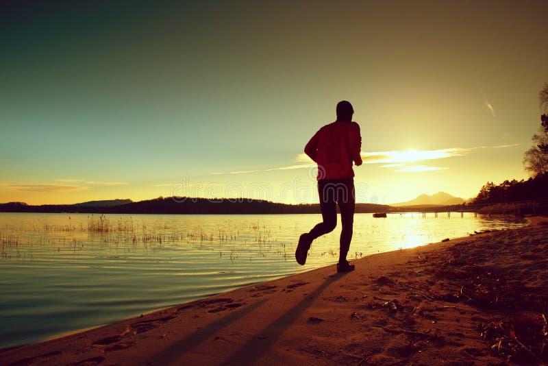 O homem alto com windcheater cor-de-rosa e o tampão escuro correm na praia no por do sol foto de stock