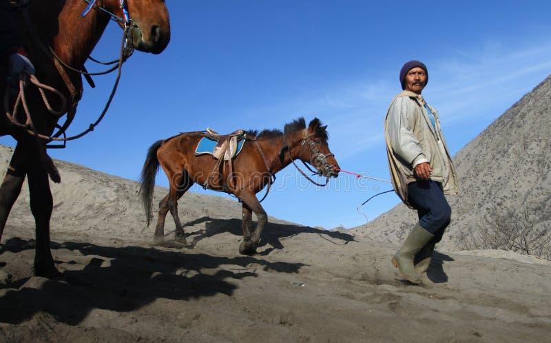 O homem asiático traz o cavalo fotos de stock royalty free