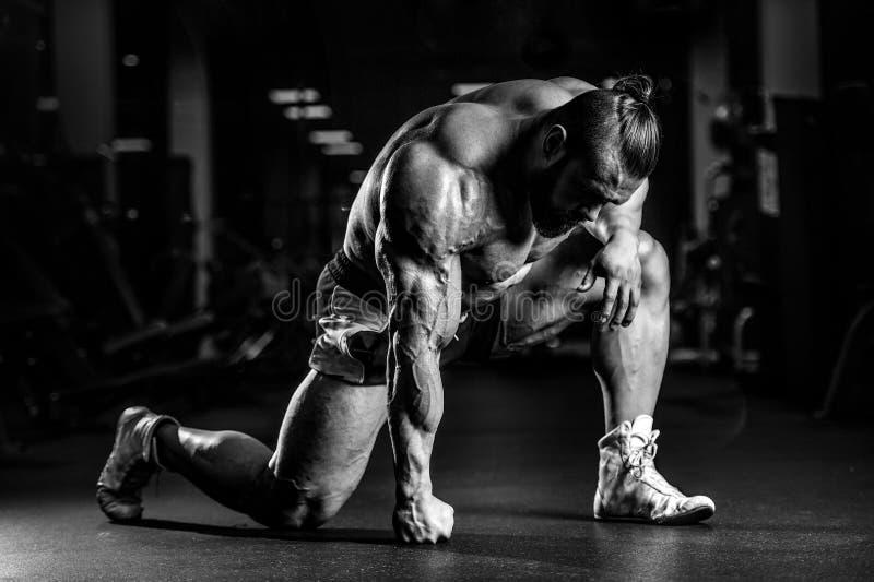 O homem atlético do halterofilista forte brutal que bombeia acima muscles fotografia de stock